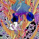 Two Irises Photograph Digital Var 1 by Heatherian