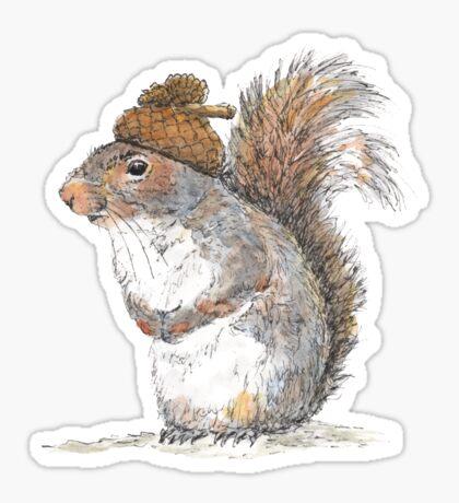 Squirrel with an Acorn Hat Sticker