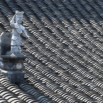 Xian Rooftop by Scully
