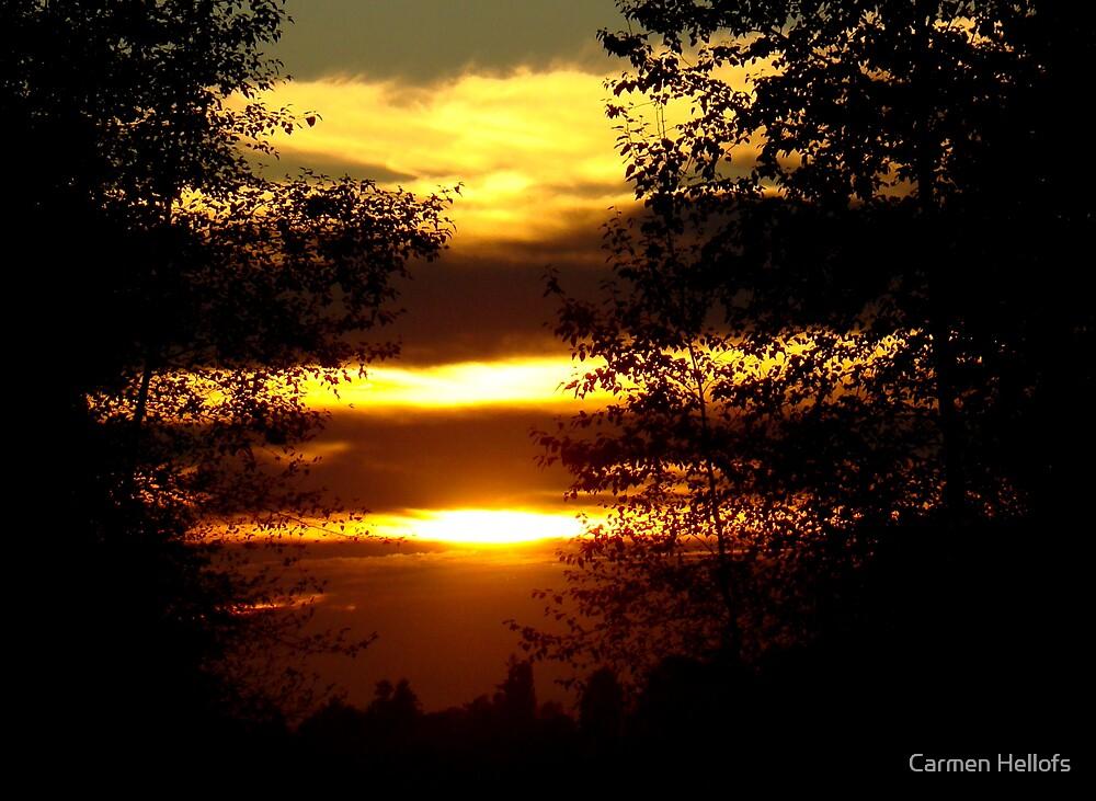 Elgin Park Sunset by Carmen Hellofs