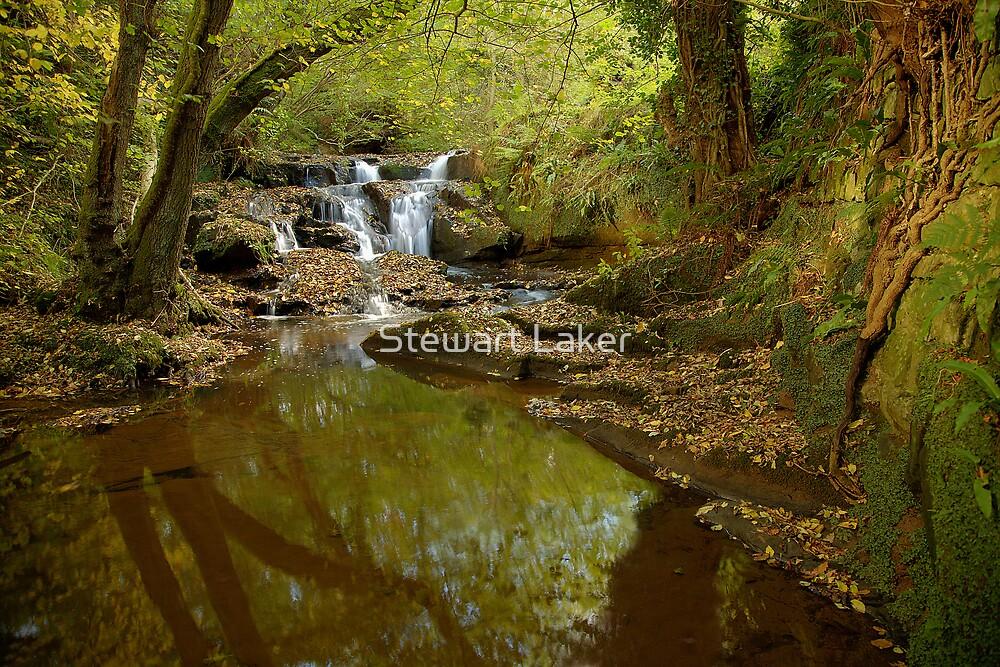 Mickleby Beck Waterfall 1 by Stewart Laker