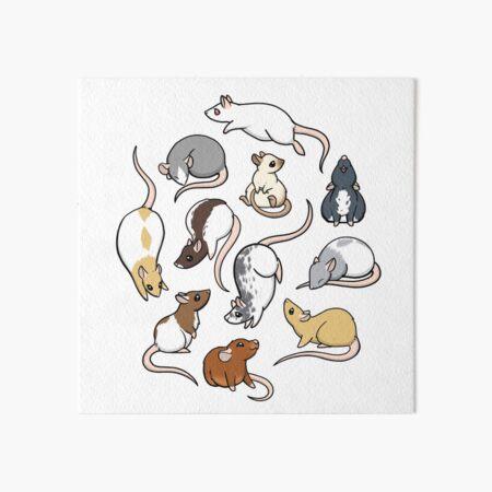Rats Art Board Print