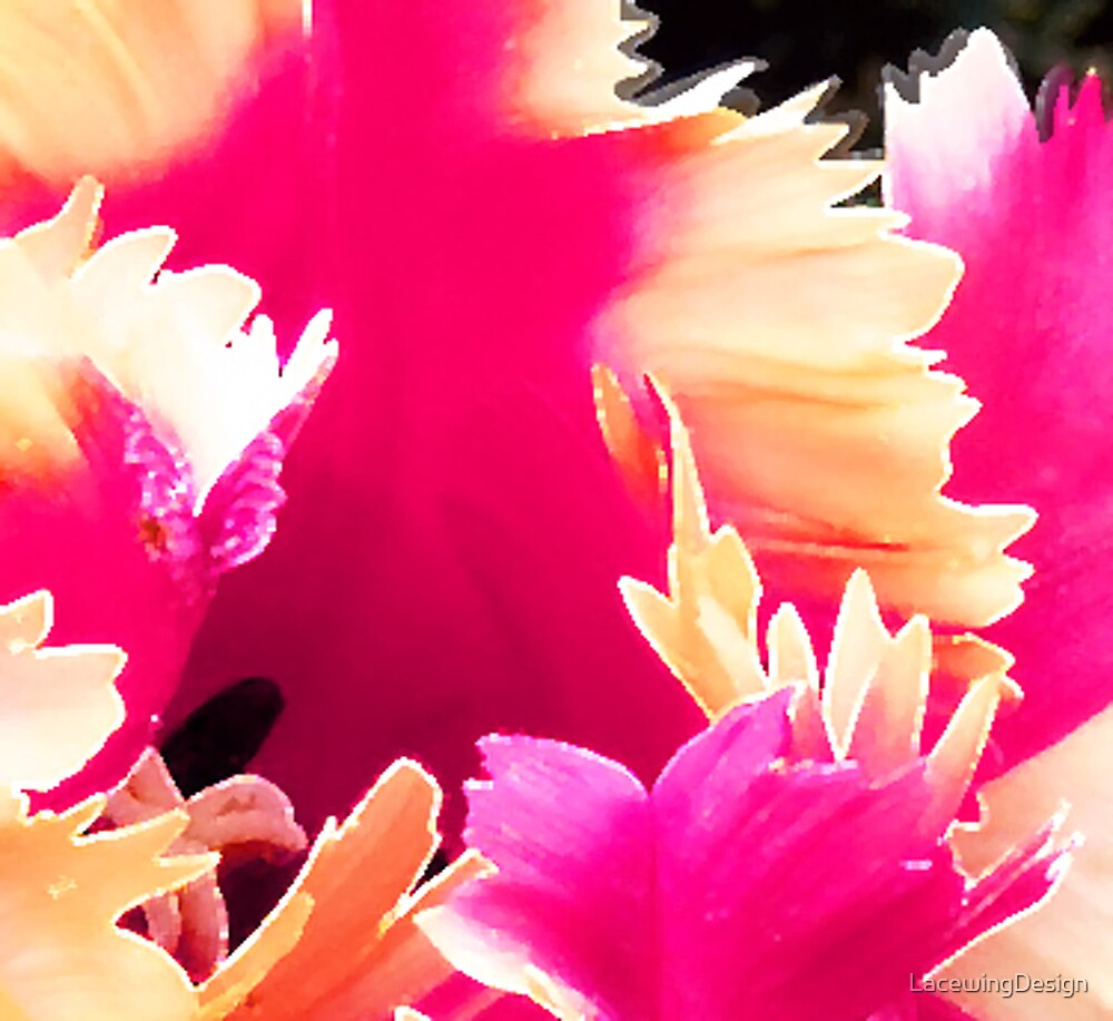 PINK PARROT TULIP by LacewingDesign