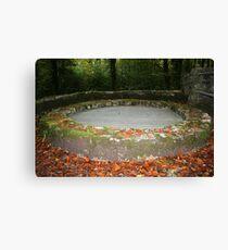 Autumn in Coole Park Canvas Print
