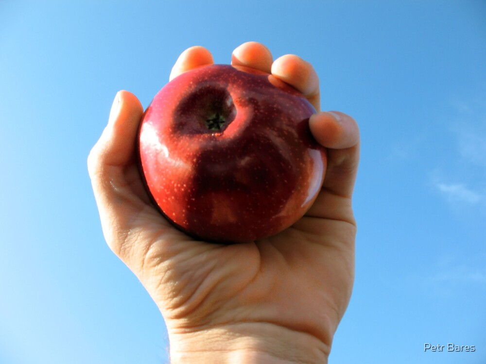 Apple in the hand by Petr Bares