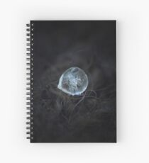 Drop of ice rain Spiral Notebook