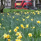 London Bus by Camilla