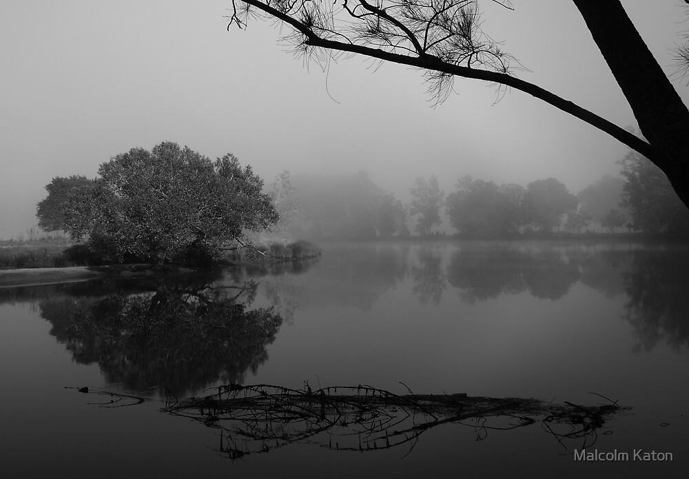 Tranquil Reflections B & W - Bedlam Creek, NSW by Malcolm Katon