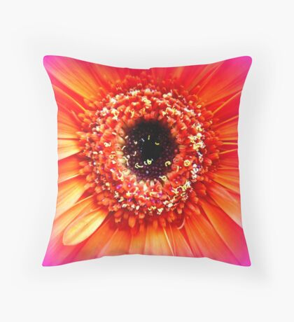 Gerbera in orange and pink Throw Pillow