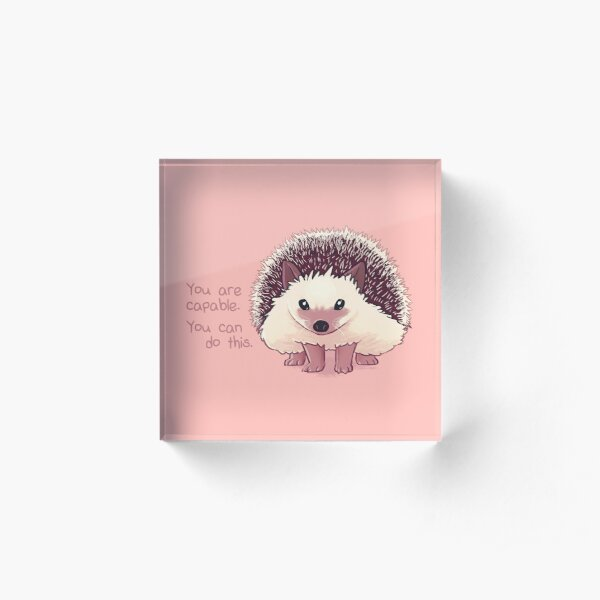 """You Are Capable"" Hedgehog Acrylic Block"