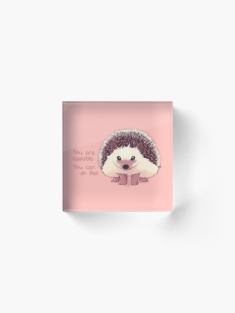 """Alternate view of """"You Are Capable"""" Hedgehog Acrylic Block"""