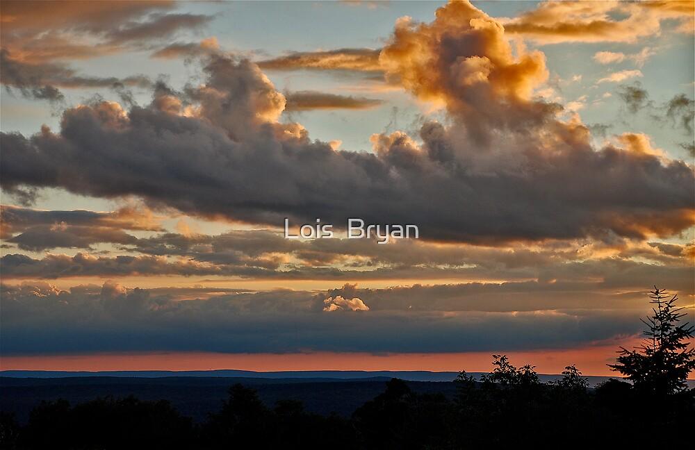 Good Night by Lois  Bryan