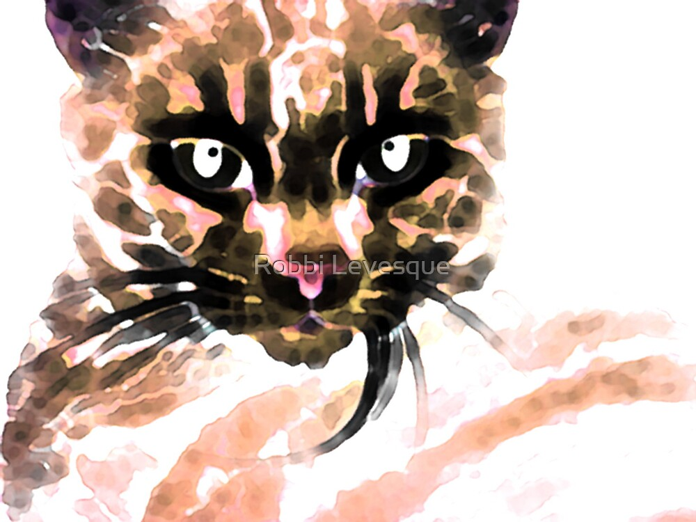 Wild Kitty by down23