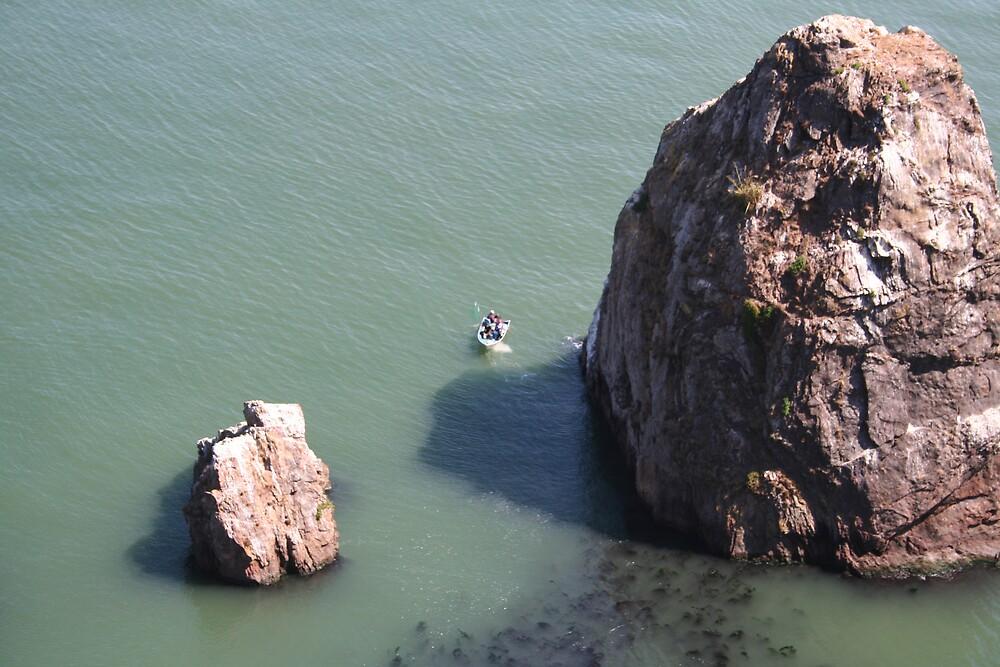 Rock near Golden Gate bridge San Francisco CA by Ilan Cohen