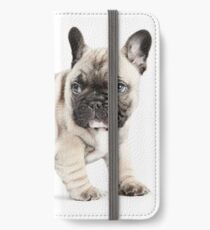 Walkabout iPhone Wallet/Case/Skin
