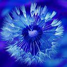 Blue Beauty by ChereeCheree