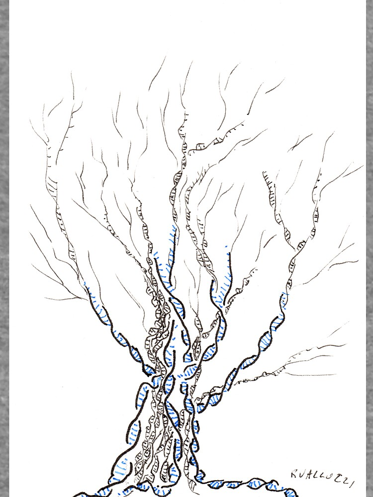 Little DNA Tree, Hand drawn ink on paper ACEO by rvalluzzi
