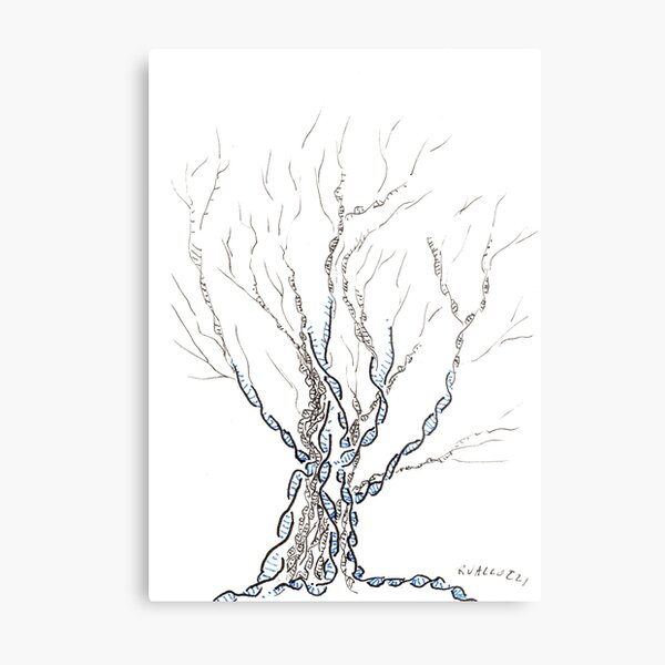 Little DNA Tree, Hand drawn ink on paper ACEO Metal Print