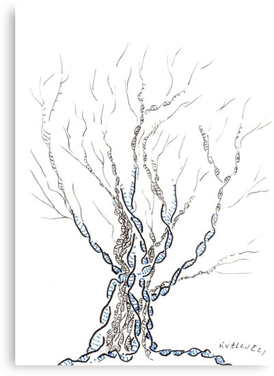 Little Dna Tree Hand Drawn Ink On Paper Aceo Metal Prints By