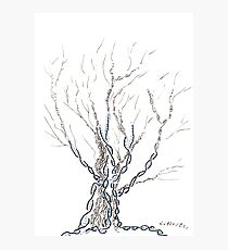 Little DNA Tree, Hand drawn ink on paper ACEO Photographic Print