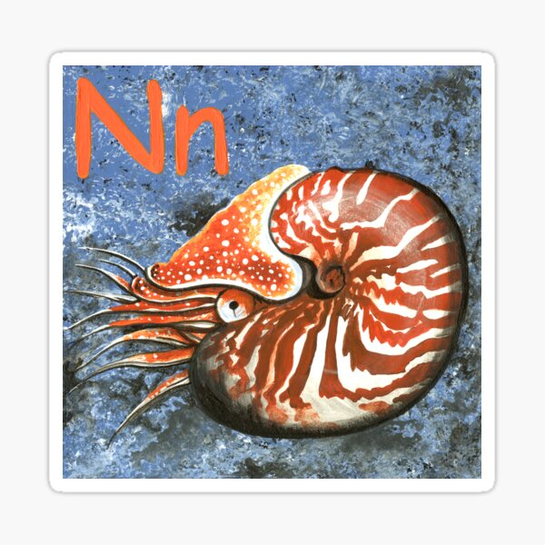 N is for Nautilus Sticker