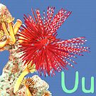 U is for Urchin by Annie Davenport