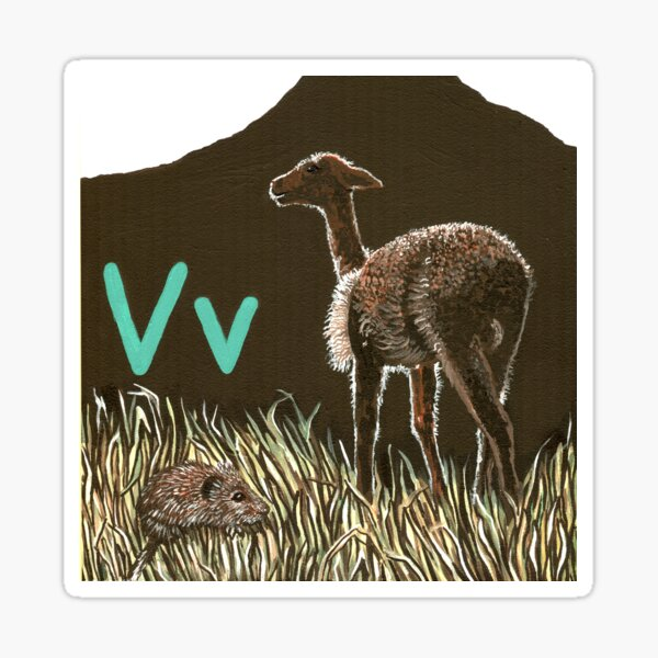 V is for Vole & Vicuna Sticker