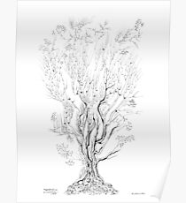 Variation on a Cayley tree Poster