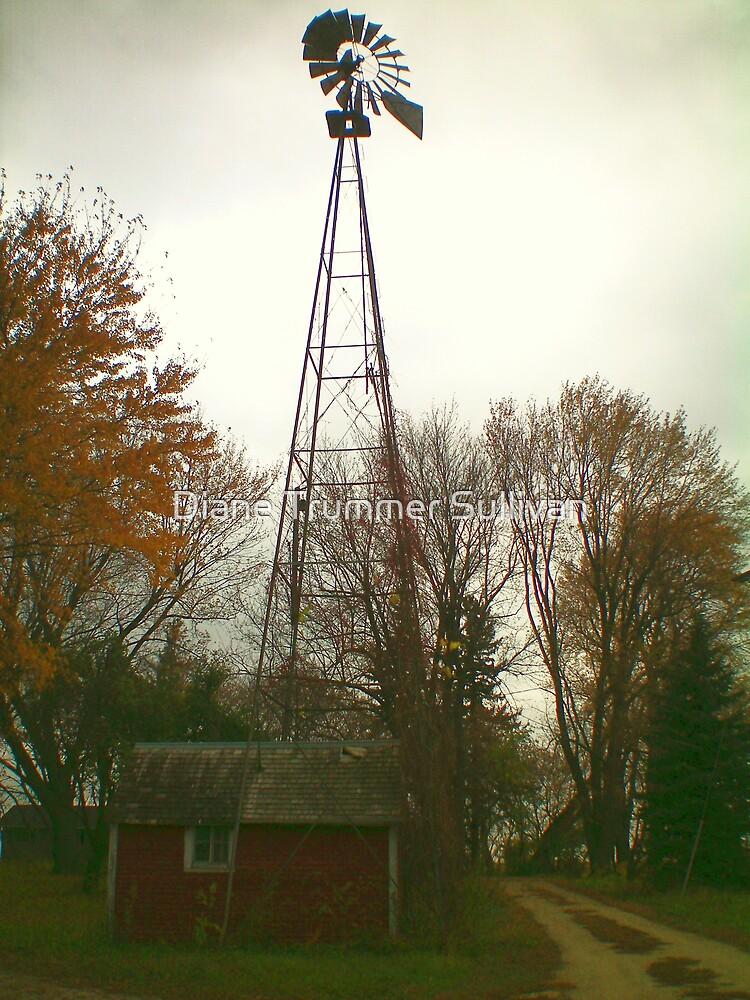 Old Farm windmill by Diane Trummer Sullivan