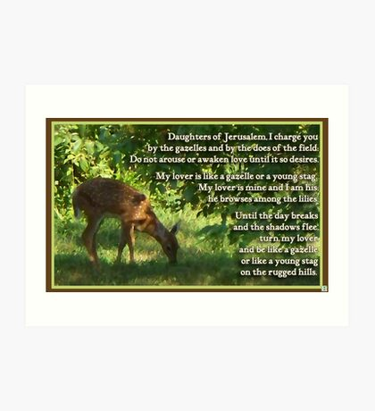 Canticle of Canticles 2:7,16-17 Art Print