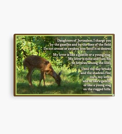 Canticle of Canticles 2:7,16-17 Metal Print