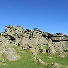 November Dartmoor (Houndtor) by lezvee