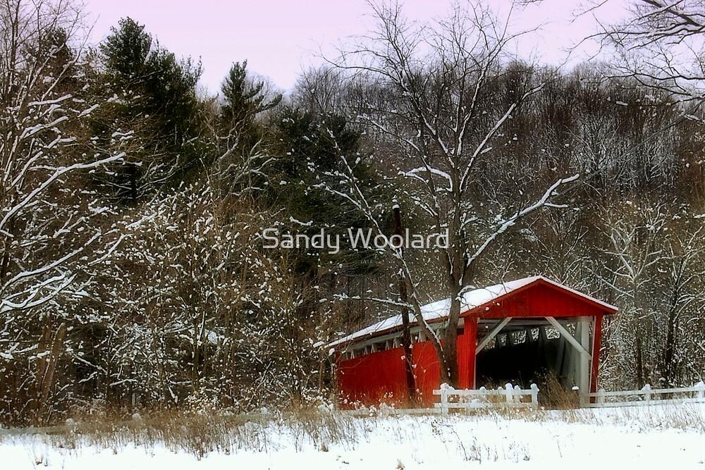 Morning Snow by Sandy Woolard