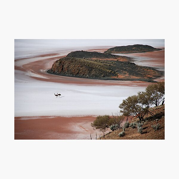 Lake Ballard Emus Photographic Print