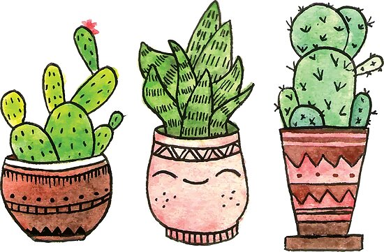 'Cute cartoon cactus with funny kawaii faces in pots  Watercolor  illustration ' Poster by crisknopfler