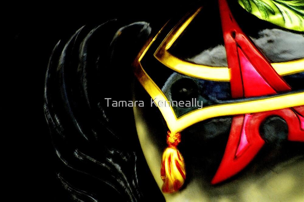 Carousel by Tamara  Kenneally