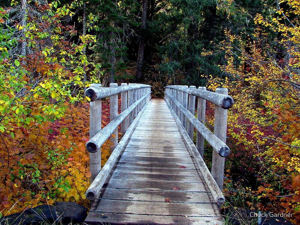 McKenzie River Trail Head Bridge by Chuck Gardner