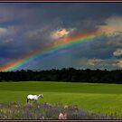 Reflecting Rainbows by Wayne King