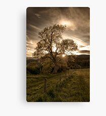 Sunset at Loch Ness Canvas Print