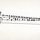 Song Birds by Eric Fan