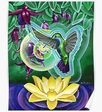Hummingbird Vibration Poster