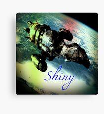 Shiny Firefly Canvas Print