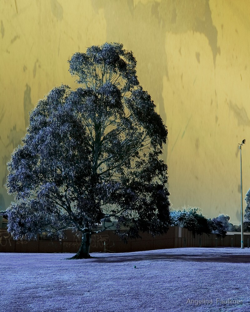 Darkened Tree by Angelina  Faulkner