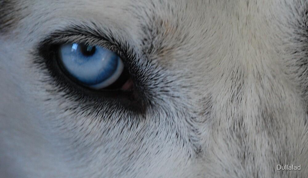 eye blue by Dullalad