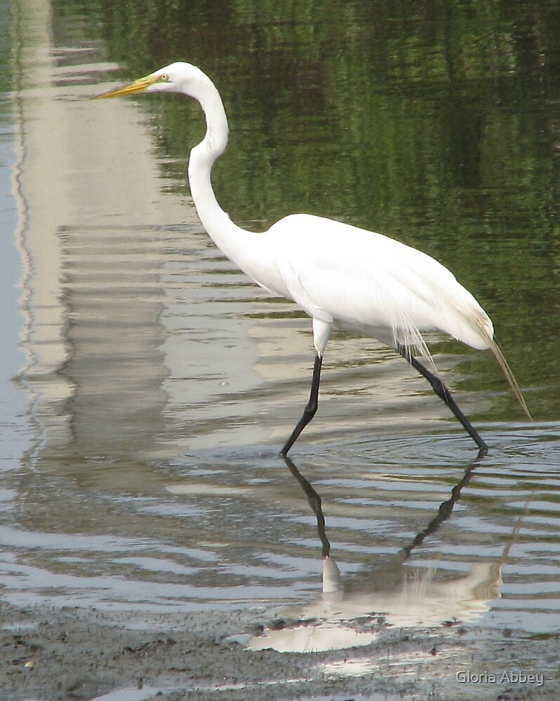 The Egret by Gloria Abbey