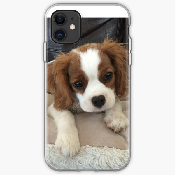 Puppy on a pillow  iPhone Soft Case