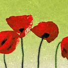 Poppies by Beth A