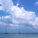 Yachts in the bay by Annie Smit
