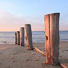 beach art by Patricia Gibson