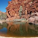 Trephina Gorge, Northern Territory, Australia by Adrian Paul